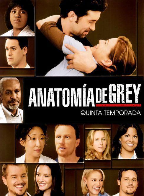 Cartel Temporada 5 de 'Grey's Anatomy'