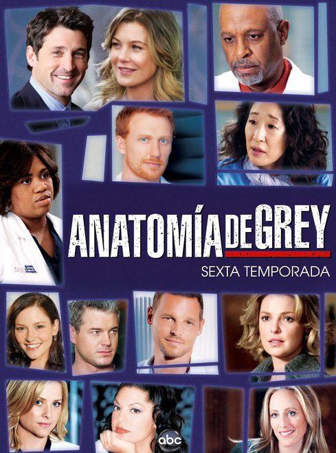 Cartel Temporada 6 de 'Grey's Anatomy'
