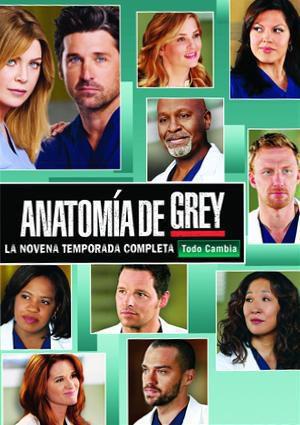 Cartel Temporada 9 de 'Grey's Anatomy'