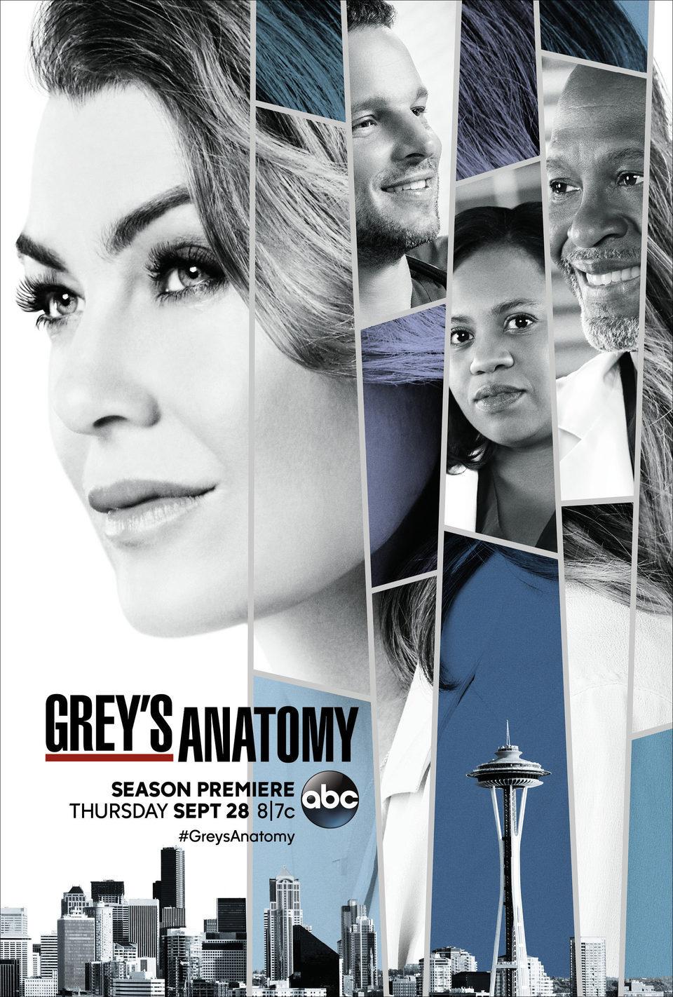 Cartel Temporada 14 de 'Grey's Anatomy'