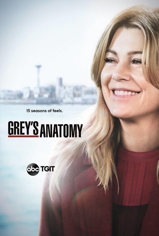 Cartel Temporada 15 de 'Grey's Anatomy'