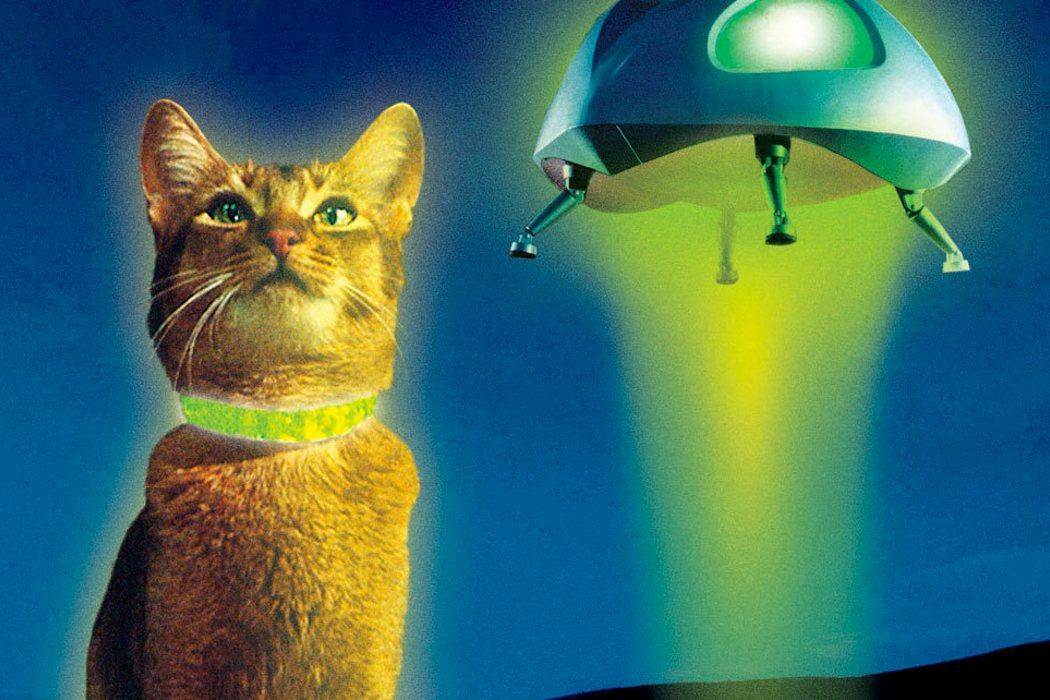'El gato que vino del espacio'